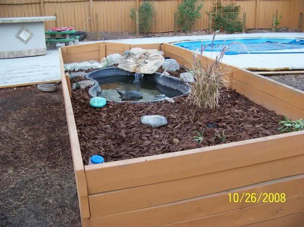 1000 ideas about turtle habitat on pinterest box turtles tortoise enclosure and turtle tanks Diy indoor turtle pond