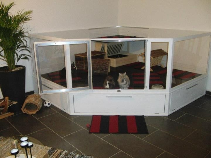54 besten zum selber bauen kaninchen stall co bilder. Black Bedroom Furniture Sets. Home Design Ideas
