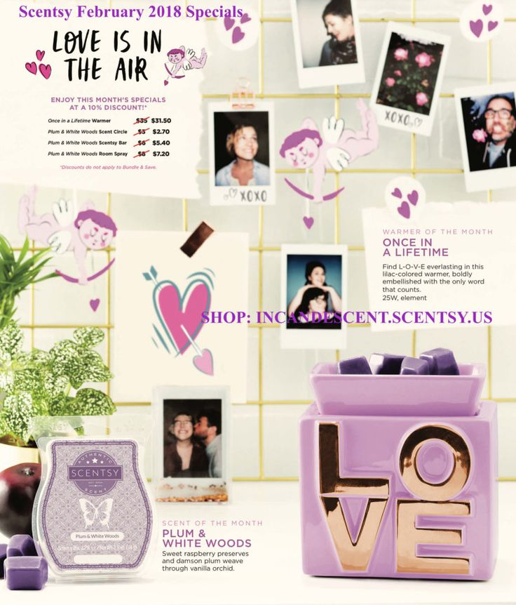 SCENTSY FEBRUARY 2018 WARMER & SCENT OF THE MONTH – ONCE IN A LIFETIME & PLUM AND WHITE WOODS FRAGRANCE | Scentsy® Buy Online | Scentsy Warmers and Scents | Incandescent.Scentsy.us