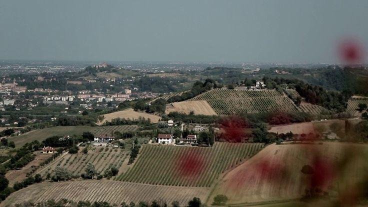 """""""Il bello e il buono della #Romagna"""" Produzione #video per il Comune di Forlimpopoli"""