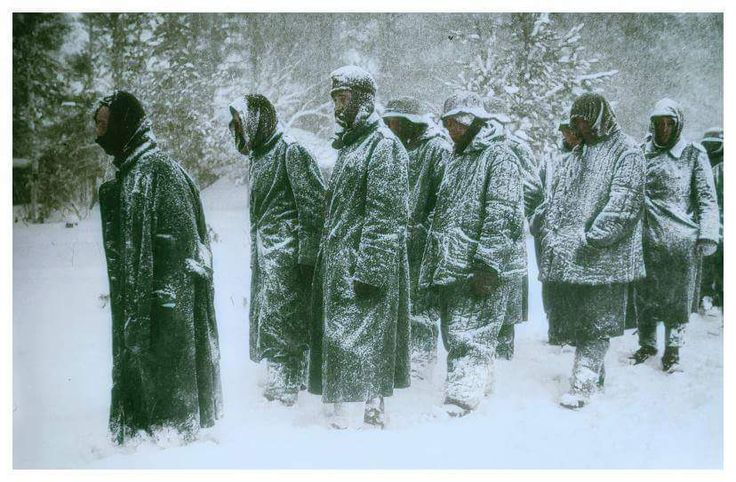 """""""les malgré-nous"""" - """"Against our will"""" POWs being force marched in the snow to Tambov Prison Camp, Russia 1942 In August 1942, the German government decided that all men from Alsace and Lorraine regions born between 1908 and 1928 were to be enlisted..."""