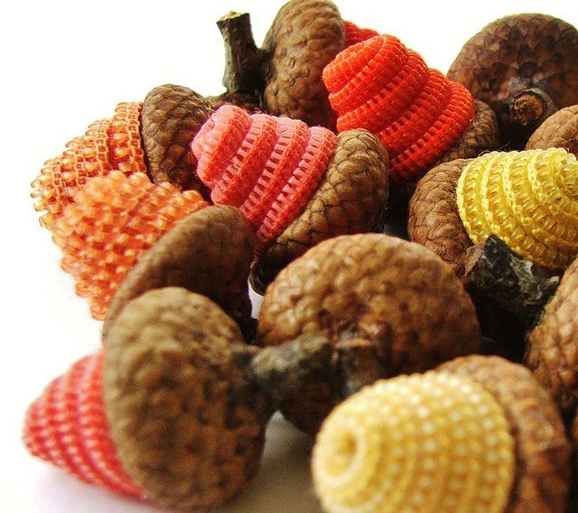 17 best images about diy with acorns on pinterest autumn for Diy acorn crafts