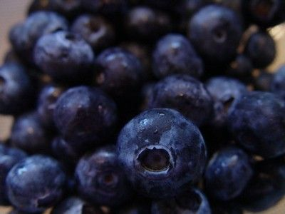 Blueberry Jam Recipe (cooked freezer jam made in the pressure cooker) by ePressu…
