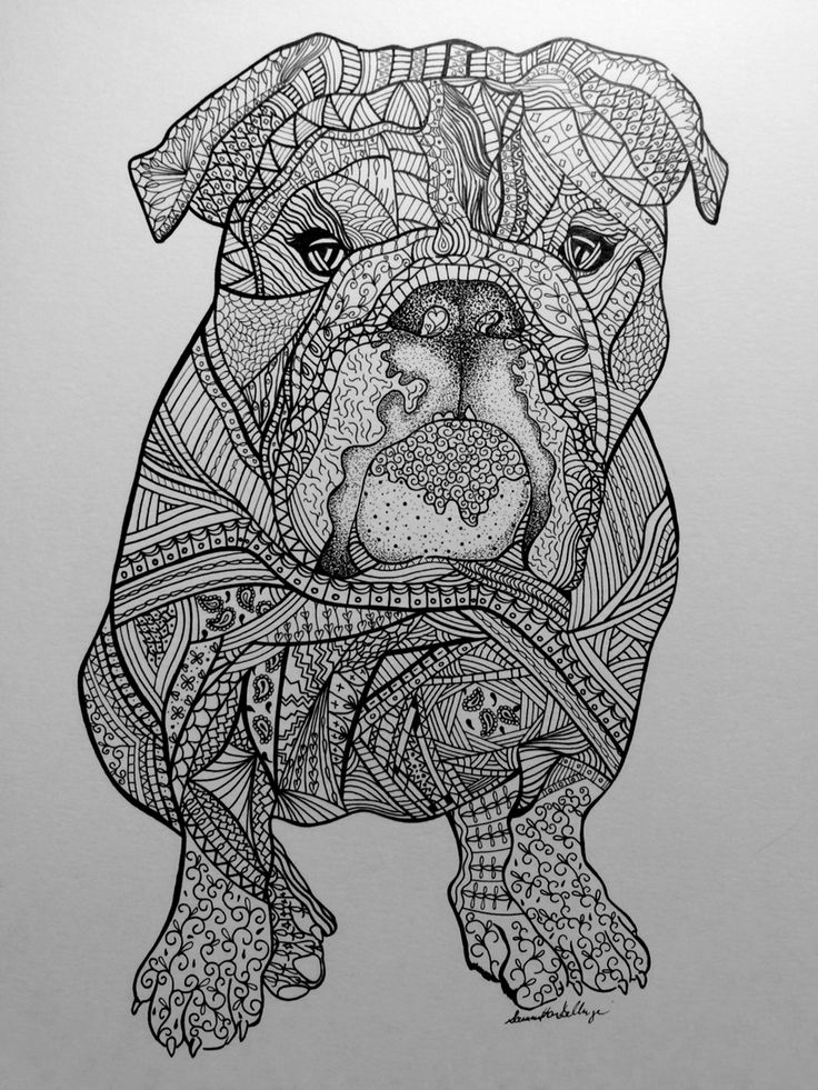 Zentangle drawing of Lola the bulldog Visit wwwetsy
