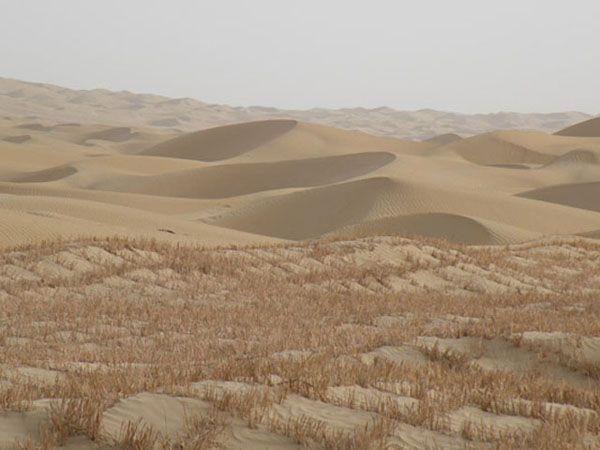 Многие считают, что в пустынях не может быть ничего интересного. Да и что там искать - один лишь песок? Однако и среди бескрайних просторов есть такие пустыни, которые привлекают какими-то своими особенностями. Расскажем ниже о 10 самых необычных пустынях мира.... http://www.molomo.ru/inquiry/deserts.html #Самыеудивительныепустыни