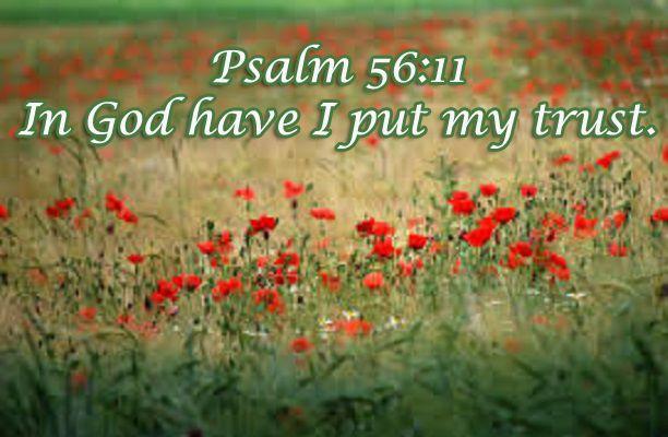 Psalm 56  http://biblehub.com/kj2000/psalms/56.htm