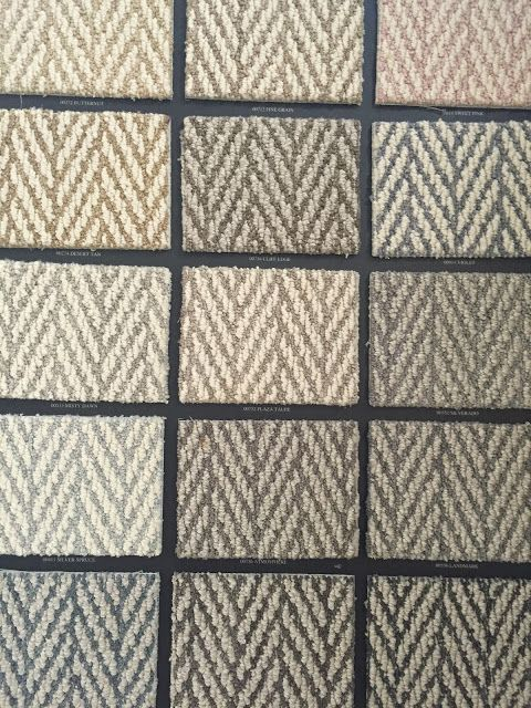 Design Indulgence Shaw carpet: Tuftex  style: victoria falls Nice for a bound area rug