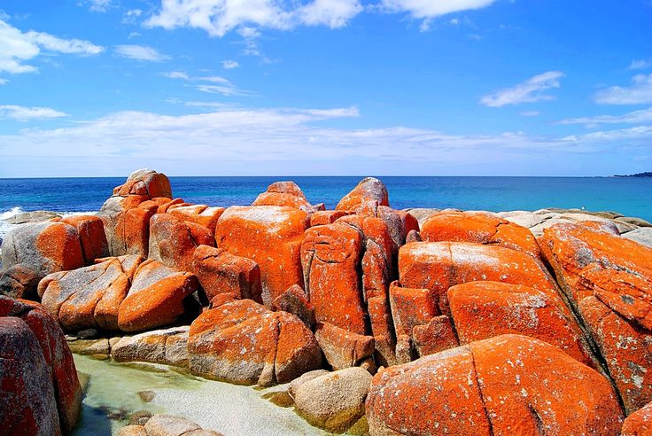To give you a taste of the amazing, yet often-forgotten south corner of Australia, here are 8 incredible Tasmania attractions you can't miss.