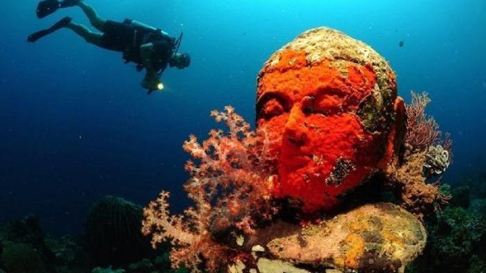 Wisata Bahari Pemuteran - Snorkeling dan Diving di Sini Bisa Temukan Kerajaan…