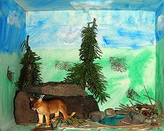 Dioramas Habitats And Tags On Pinterest