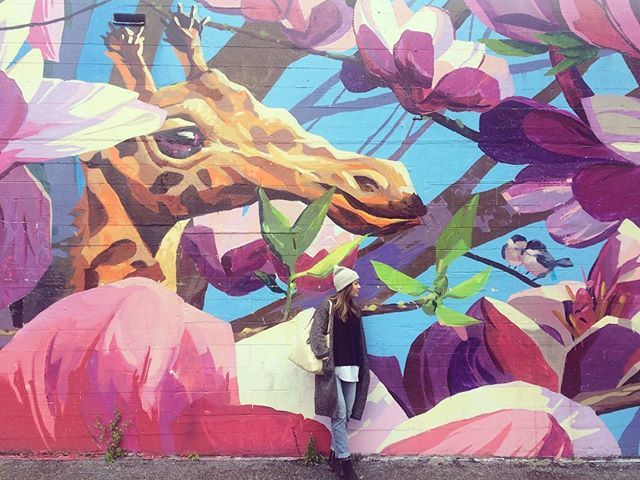 PINK JUNGLE ON 8TH AND MAIN  24 Colourful Walls In Vancouver To Take The Perfect Instagram - Narcity