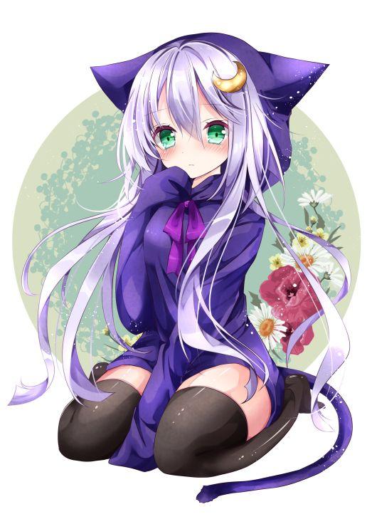 Anime neko with purple hair