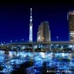 100.000 luces flotantes, impresionante!