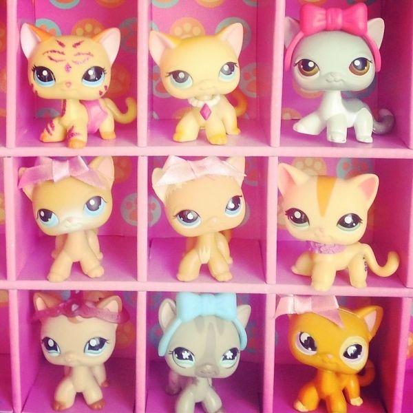 2018 Siamese Littlest Pet Shop Huge Lot 9 Short Hair Cats Brooke