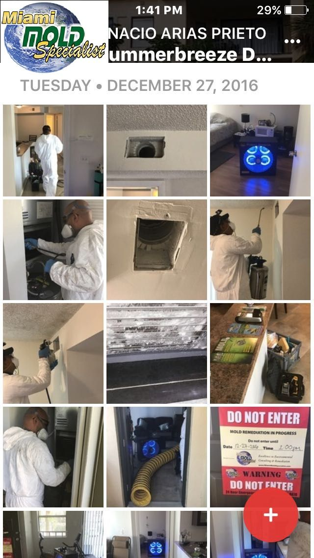"""Specializing in high tech mold inspections, """"conflict free"""