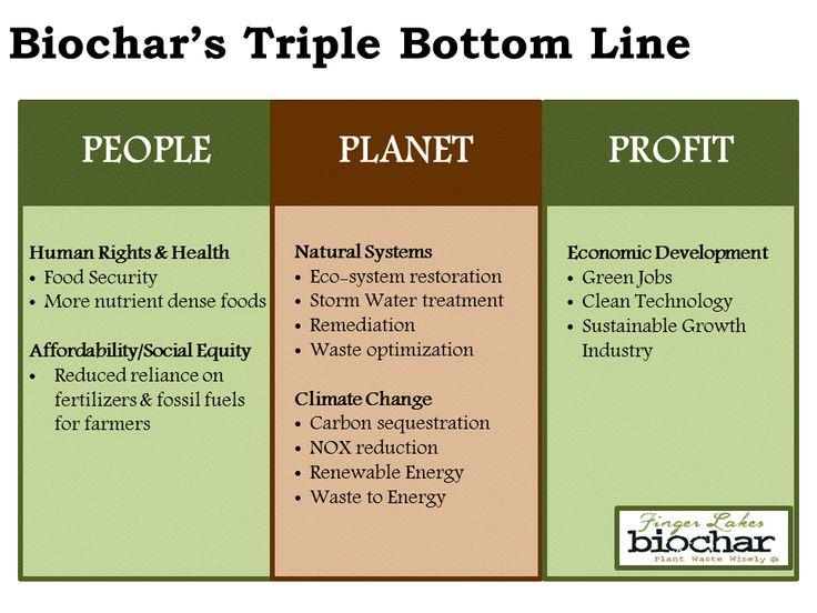 Biochar's Triple Bottom Line