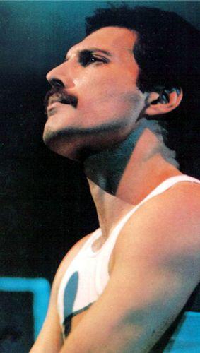 Freddie Mercury - Born: 5 September 1946 – Died: 24 November 1991.