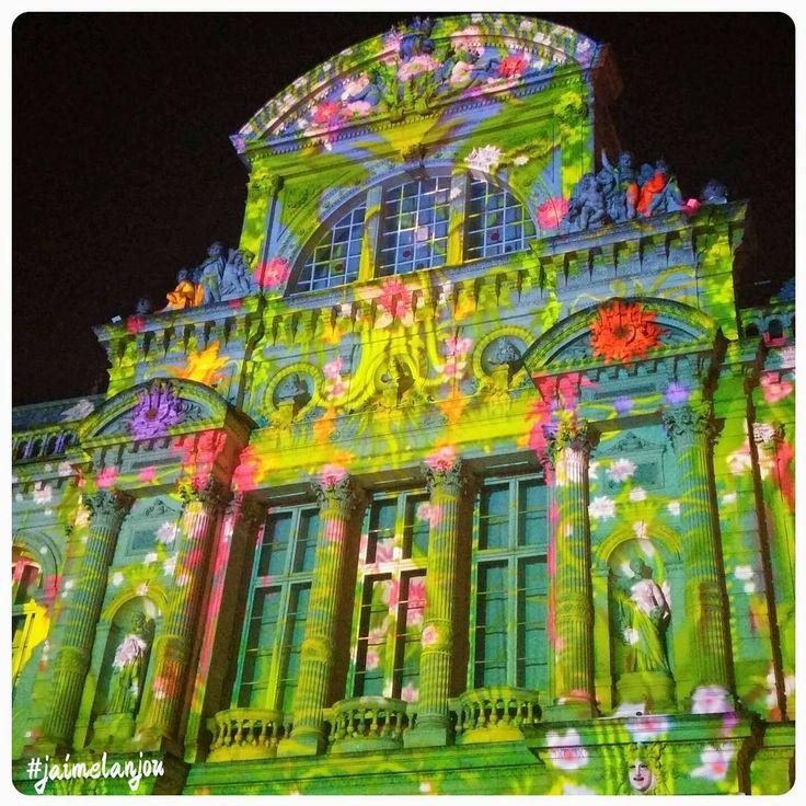 L'illumination du grand théâtre d'Angers pour le son et lumière tous les samedis soirs ! #jaimelanjou #anjou #angers #saumur #paysdelaloire #jaimelafrance #angersmaville #angersbynight #instagood #instamood #travelgram #instalike #tagsforlike #followme #like4like #picoftheday #pictureoftheday#instagood #art #artcontemporain #lumiere #sonetlumiere #fleur #artistic #lookingup #floor #color #maineetloire #france #igers_france #FredericC