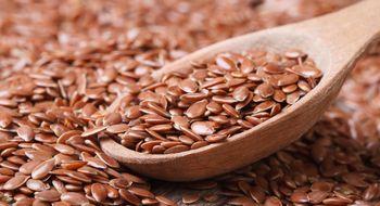 Sementes saudáveis e bons para a sua dieta  3Jul 2014  A RIQUEZA DAS SEMENTES Se precisamos de alimentos que a natureza nos fornece com uma riqueza excepcional e que além disso nos ajude com uma eficiência sem comparação na hora de perder peso nenhum talvez como as sementes.  As sementes geralmente são uma boa fonte de fibras gorduras insaturadas minerais e proteínas.  Por isso vamos falar de algumas pendentes em estas e outras qualidades para que tenhamos onde escolher.  SEMENTES DE…