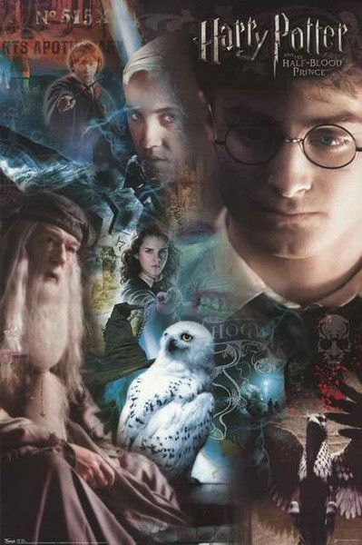 Harry Potter Half-Blood Prince Cast 2009 Movie Poster 22x34 – BananaRoad