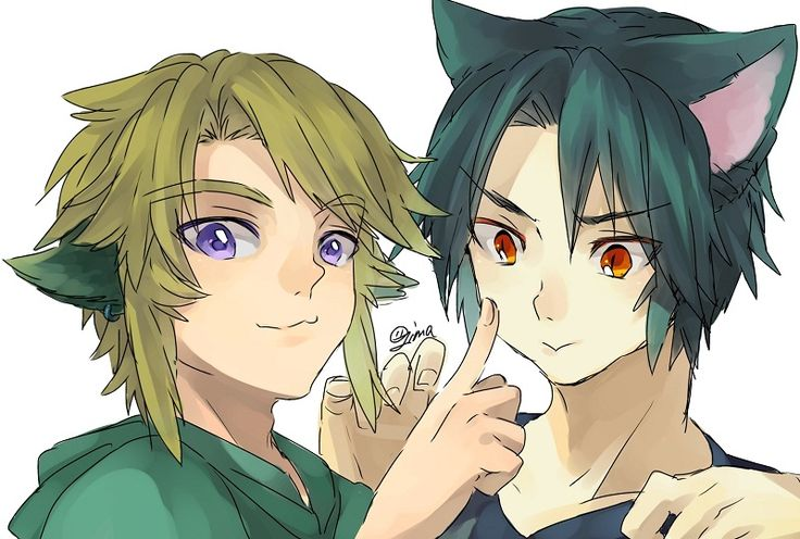 Dark Link and Link. These 2 dorks are so cute in this pic! XD I wonder who the artist is?