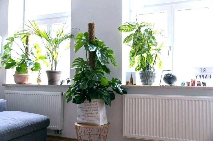 Planter Christmas Decorate Window Sill Decoration … – # Flower Box #dec …   – Dekoration Wohnzimmer