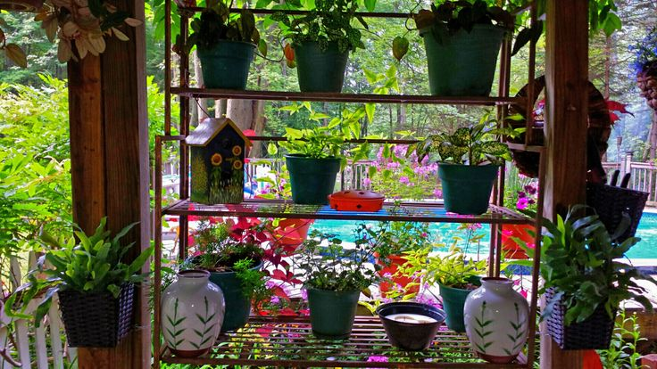 A old shelf I hung in my sitting area to create a plant window box, I also used wicker baskets on the posts for decorative plant boxes!