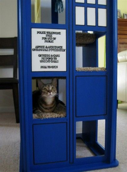 Tardis Cat tree! cats AND doctor who?! can it get much better?