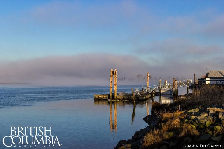 Ladner Canoe Pass. Fogcouver - 10 Gorgeous Photos from Foggy Vancouver