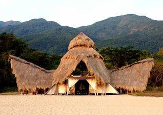Greystoke #Mahale #Tanzania #safari