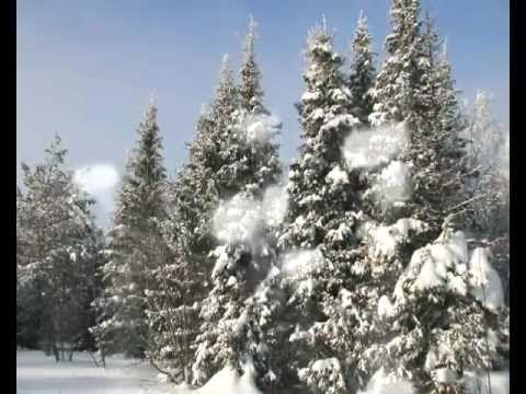 Падает снег Сальваторе Адамо — Яндекс.Видео