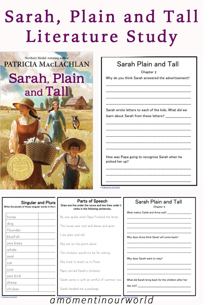 Recently we have completed reading a short novel calledSarah, Plain and Tall.This bookis set in the pioneer days of American history and is told from Anna's (the daughters) point of view. It is a simple story about a family whoneeded a motherand how a new woman was able to gradually fit in. While reading it, …