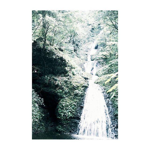 【m.style.photography】さんのInstagramをピンしています。 《. 静かなる四重奏  聞こえてくるのは  木々のざわめき 風の口笛 鳥の歌声 滝の旋律  阿寺の七滝(日本の滝100選)  #unsquares #rsa_ladies #tv_stilllife #indies_gram #click_vision #global_ladies #global_ladies_minimal #royalsnappingartists #tv_living #tv_depthoffield #jj_still_life #minimal_love #tv_monotones  #stilllife_archive #rsa_vsco #tv_landscape #tv_nature #35mmフィルム #山 #森 #林 #木々 #滝 #緑のある風景 #水辺の風景 #フィルム写真 #フィルム写真普及委員会 #フィルム写真に恋してる #ファインダー越しの私の世界》