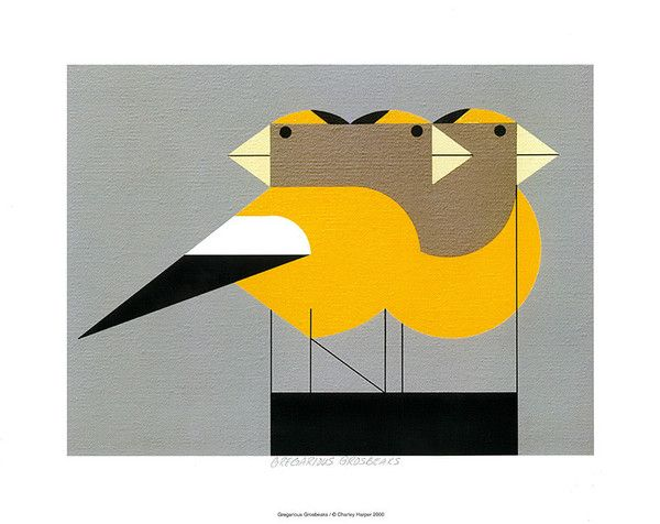 Charley Harper 'Gregarious Grosbeaks' print from Ten Things.  Australians all, let us rejoice, for we can now buy Charley Harper prints!
