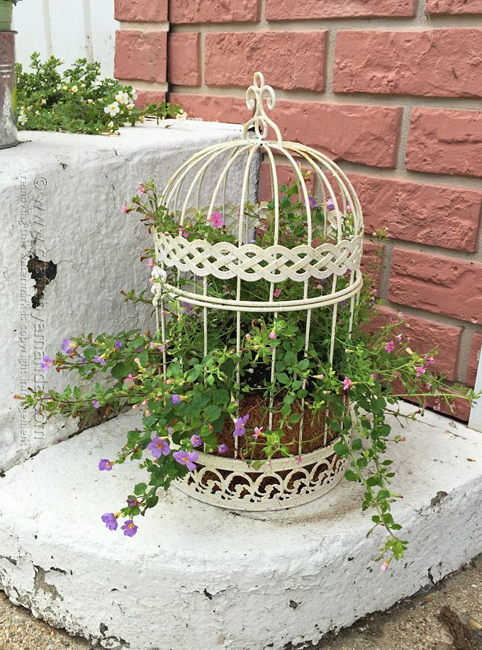 Bird Cage Flower Planter By Amanda Formaro  Crafts By Amanda