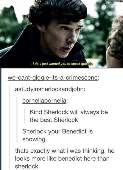 He looks like a ten year old talking to his cat. Of course, with Sherlock, talking to the cat would soon evolve to dissecting the cat, which would subsequently be taken away from him, which would lead to a tantrum of epic proportions. :-)