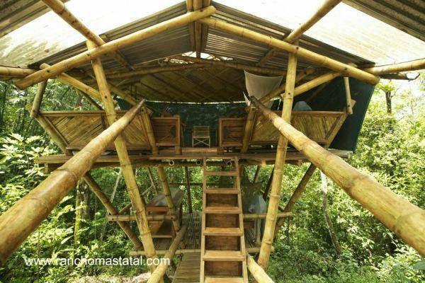 Una de las casas del rbol en el complejo de caba as - Casas en el arbol ...