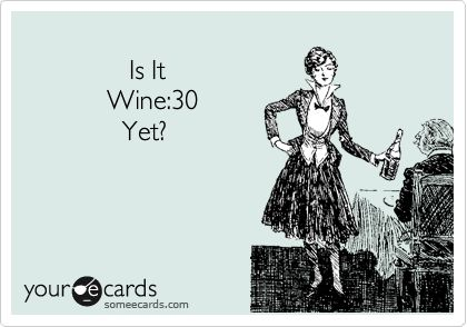 Is It Wine:30 Yet?Wine 30, Funny Pics, Wine Thirty, Well I, Wine Humor Friends, O' Clocks, Ecards Drinking Friends, Um Serious