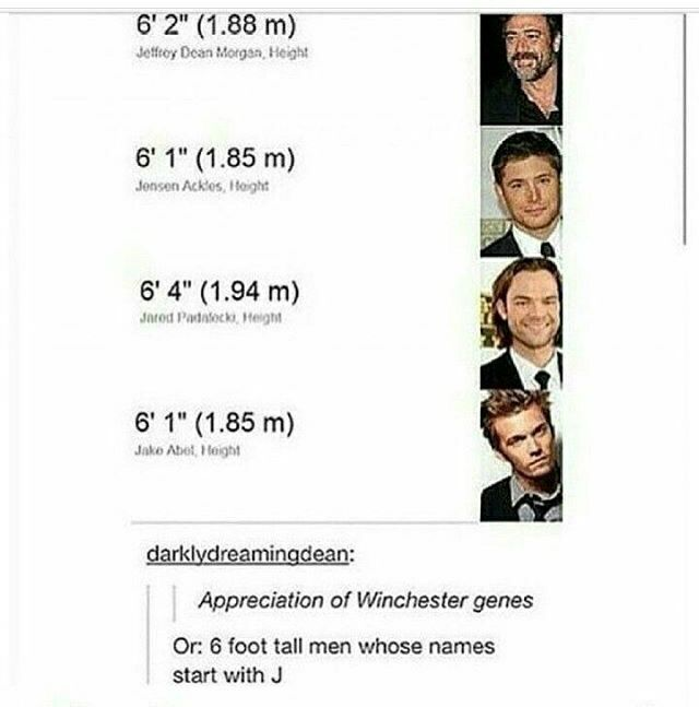 "What about Misha and Gabriel.. Oh wait.. Their short--- Well... technically Misha is 6'0""..."