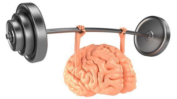 Indopress.id, Kesehatan - Untuk mendapatkan tubuh yang sehat, selain makanan yang memenuhi nutrisi tubuh, olahraga yang cukup juga wajib dilakukan. Tak hanya tubuh tentu saja, otak pun butuh olahraga agar tetap prima.  Dengan olahraga otak yang teratur, tak hanya meningkatkan kualitas kerja otak d