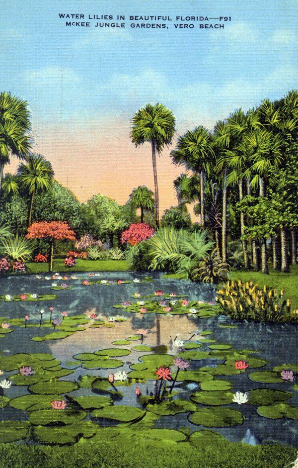 25 Best Ideas About Vero Beach Florida On Pinterest Vero Beach Fl Vero Beach And Vero Beach