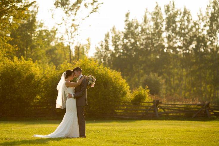 Stonefields Wedding ||Rob Whelan |http://www.robwhelanphotography.com/