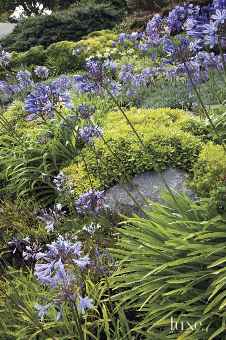687 best luxe landscapes images on pinterest backyards