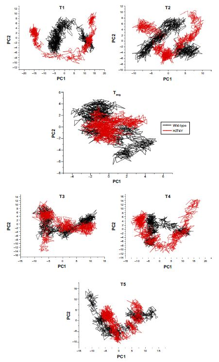 Figure 9 Principal component analysis scatter plots of 1,000 frames of the distribution along two planes, PC1 and PC2, for: WTH5N1 and H247YH5N1 illustrating differences in eigenvectors of T1, T2, T3, T4, T5, and Tavg presenting the five individual 20 ns molecular dynamic trajectories and overall average, respectively.