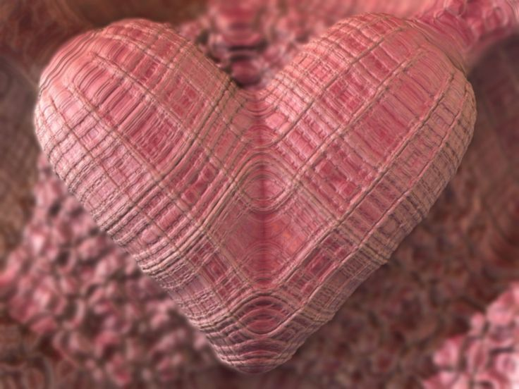 1274 best Hearts images on Pinterest   Hearts, Heart and Happy heart