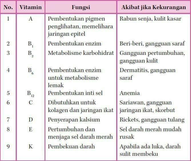 16+ Fungsi vitamin d untuk tulang trends