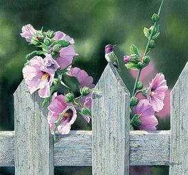 9 Best Images About Susan Bourdet Paintings On Pinterest