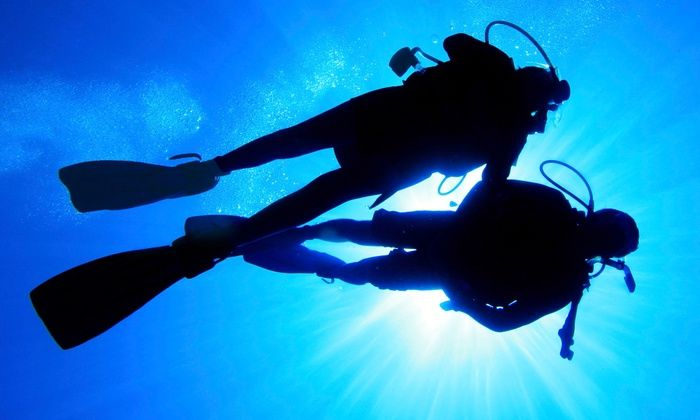 Divers' Supply Indy - Raymond Park: Discover SCUBA Lesson for One, Two, or Four From Divers' Supply Indy (Up to 53% Off)