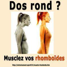 Les exercices de #musculation pour les #rhomboïdes redressent le #dos voûté lire la suite / http://www.sport-nutrition2015.blogspot.com