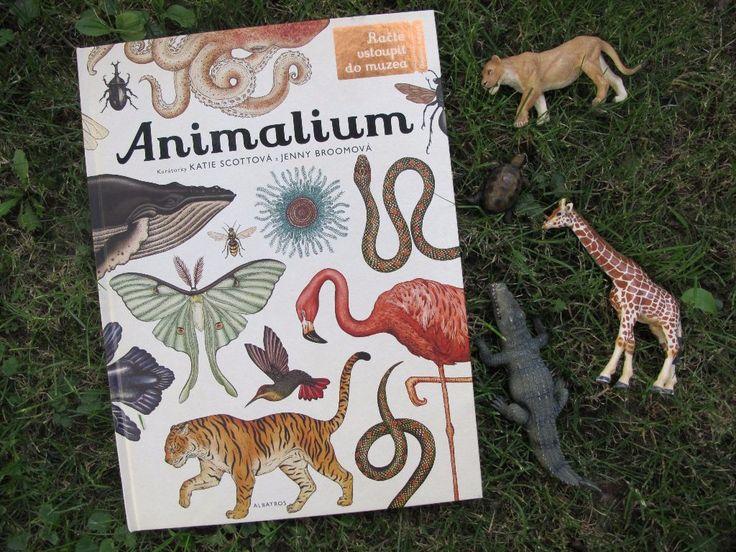 Dlouho a netrpělivě očekávaná výpravná publikace Animalium konečně dorazila do českých knihkupectví. A už při letmém prohlédnutí nenechá nikoho na pochybách, že se pravděpodobně v mnoha rodinách stane stěžejním kouskem domácí knihovny. Když jsem byla malá, měli jsme doma na polici tlustou knihu, kterou jsem si prohlížela pořád dokola. Jmenovala se Přírodou krok za krokem …